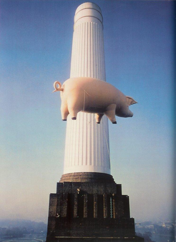 1976 Pig 1
