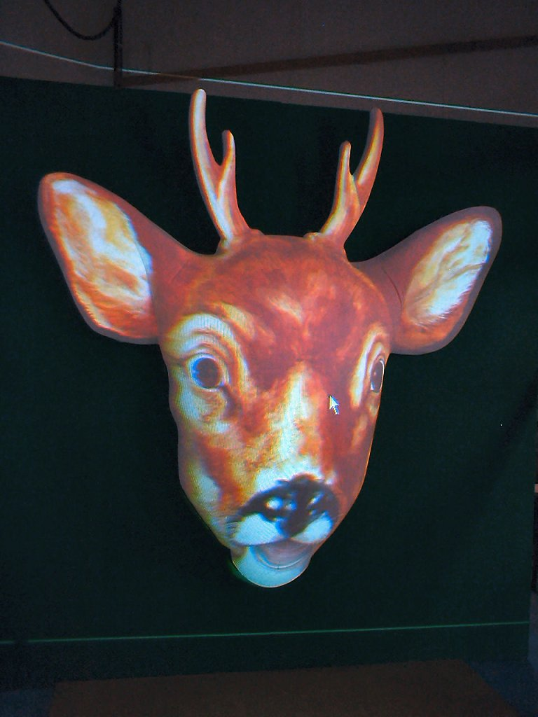 2005 Talking deer 1